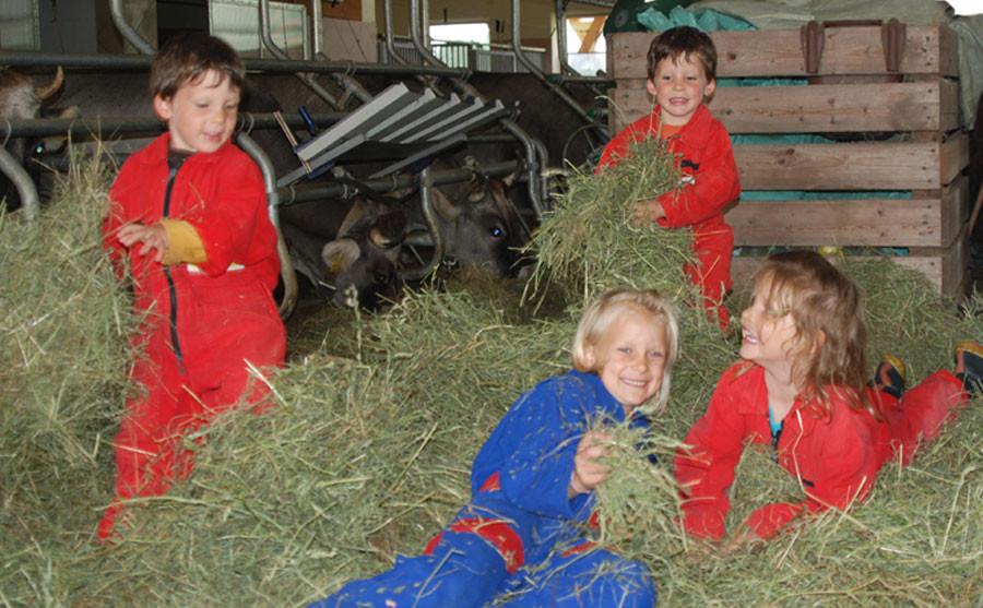 Kinder beim Spielen im Stall