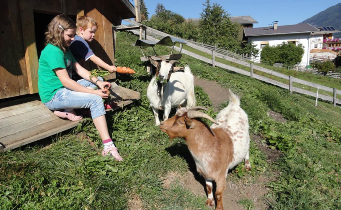 Bauernhofurlaub mit Oma und Opa