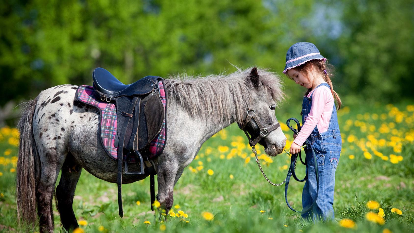 Familienurlaub am Bauernhof Tiere  hautnah erleben