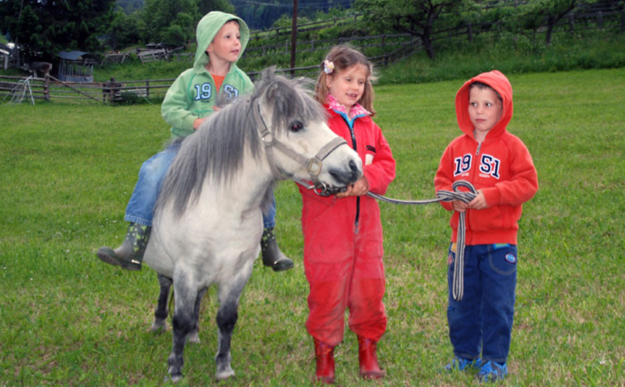 Pony Lilly mit Kinder