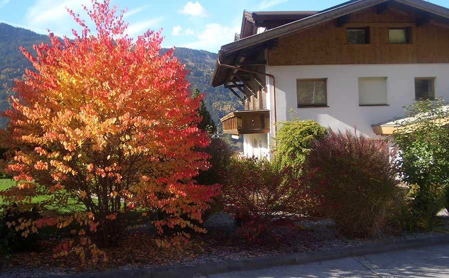 Herbstimmung am Ferienhof Raich