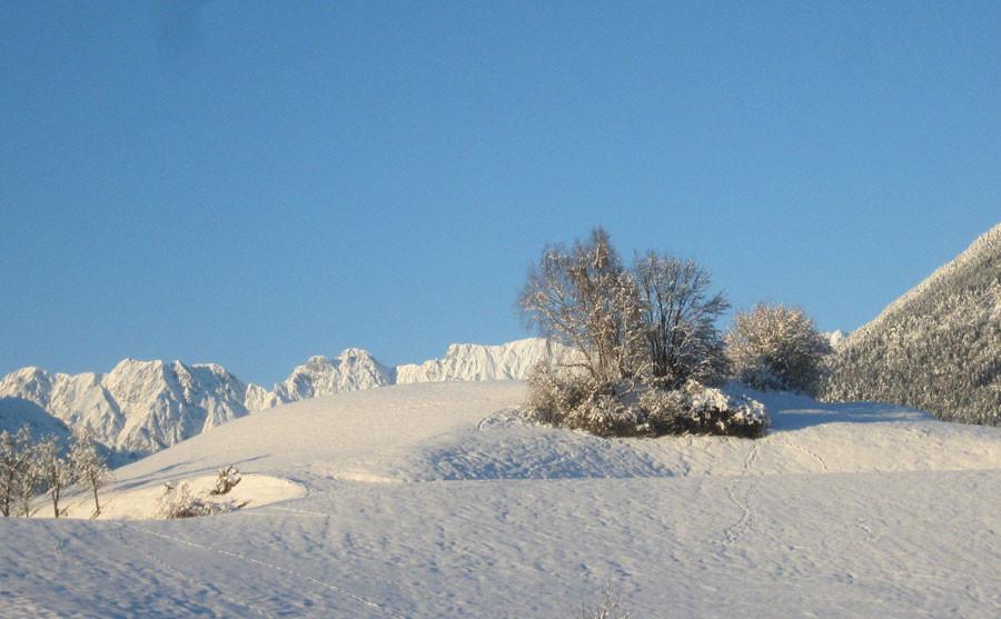 Winterzauber in Hofnähe