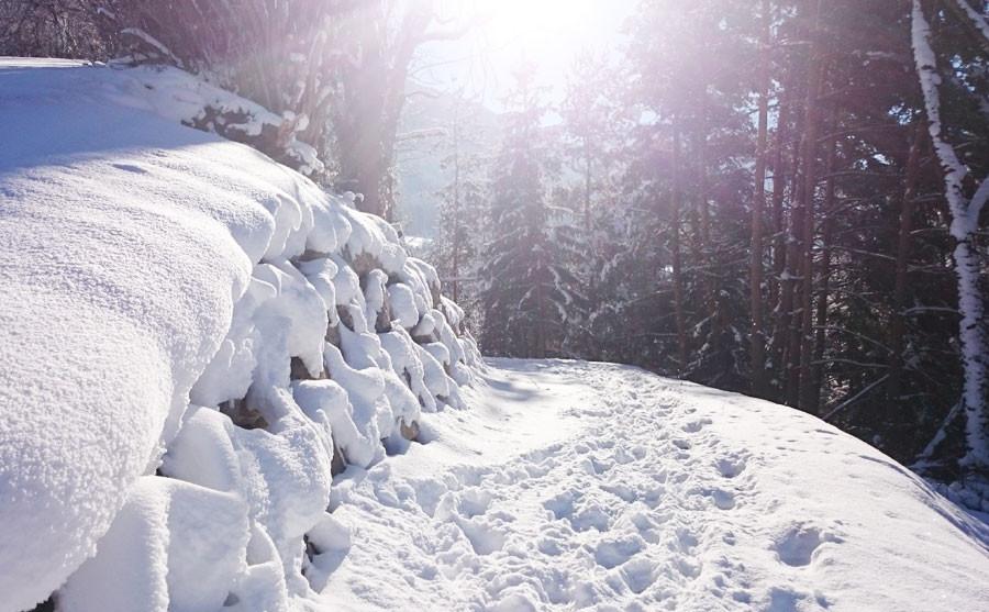 Schöne Winterwanderwege