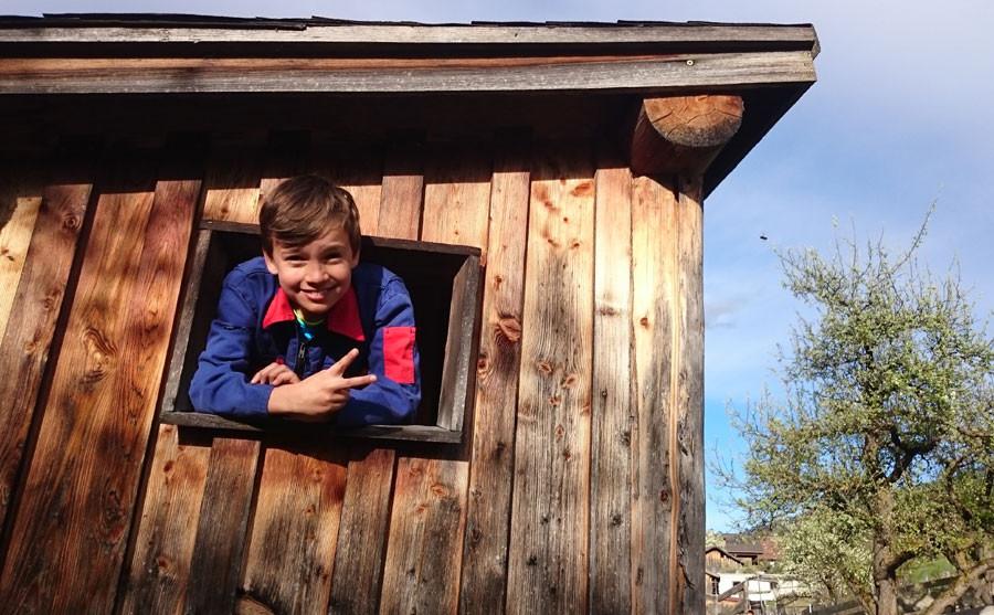 Gruß vom Baumhaus