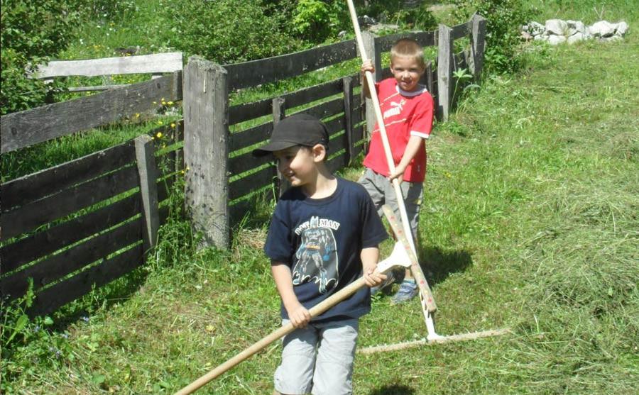 Kinder helfen bei der Heuernte